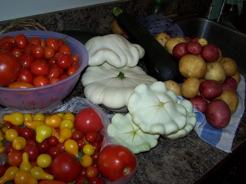garden bounty